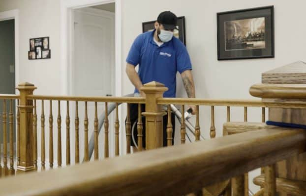Cheap Carpet Cleaners vs Professional Carpet Cleaners